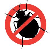 Уничтожение тараканов, клопов Санкт-Петербург